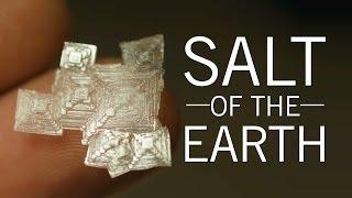 Nonton Salt Of The Earth   Original Fare   Pbs Food Film Subtitle Indonesia Streaming Movie Download