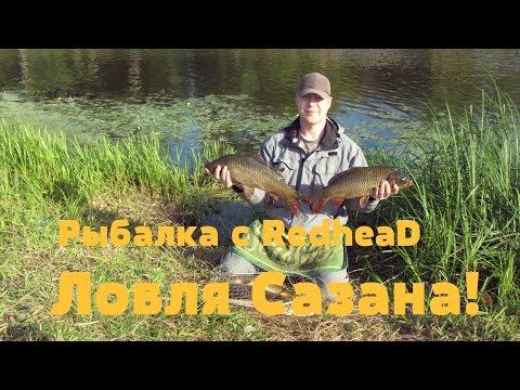 рыбалка на жабне в марте
