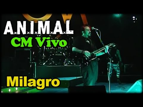 Animal video Milagro - CM Vivo 2002