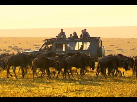 Top Billing explores the Maasi Mara