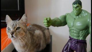 Parodia Los Vengadores 2 Hulk The Avengers