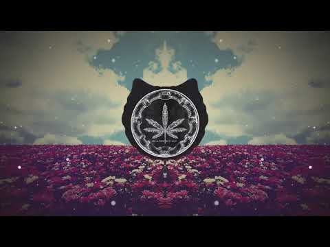 Wu Tang Clan - Back In The Game (Phoniks Remix) [ 1 Hour Loop - Sleep Song ]
