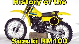 8. History of the Suzuki RM100 1976-2003 / DirtBikeDudeZ