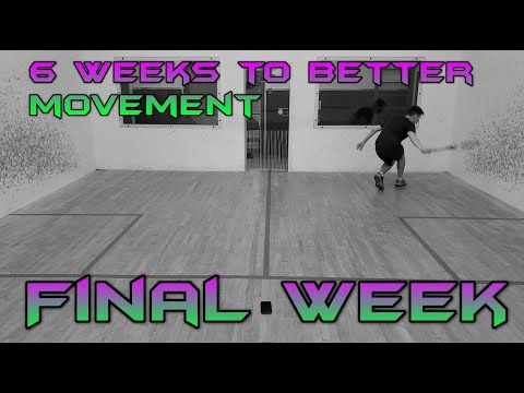 It's done! My first 6 week movement program. Week 6 Preview.