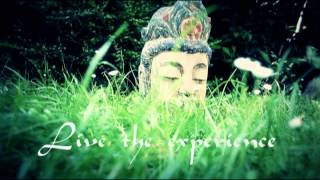 Buddha Tribe: Youtube Channel Trailer With Relaxing Buddha Lounge Music