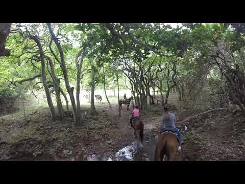 Horseback riding at Kualoa Ranch on Oahu.