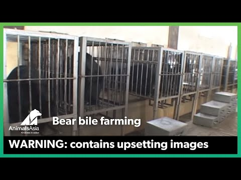 End Bear Farming