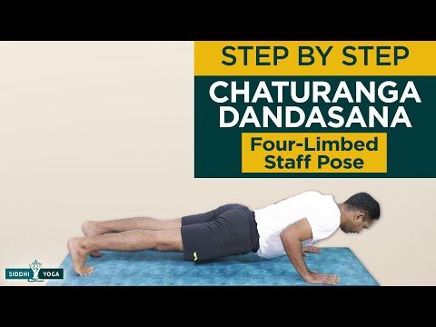 Chaturanga Dandasana (Four-Limbed Staff Pose)
