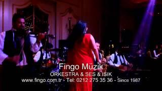 Fingo Müzik - Orkestra Grubu - Ses ve Işık Sistemi