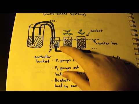 Basic Hydroponic Theory