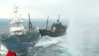 Raw Video: Ships Collide in Whaling Clash