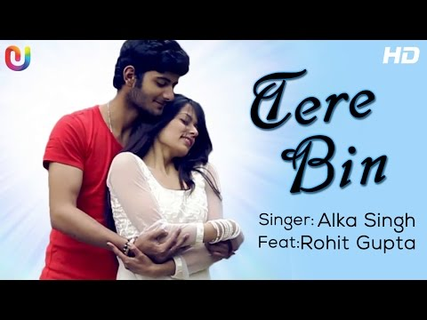 Tere Bin - Full Song | Alka Singh ft. Rohit Gupta