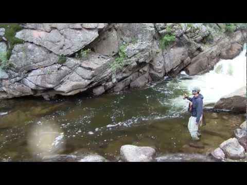 Big Fish, Small Stream. Fly Fishing Colorado May 13, 2012