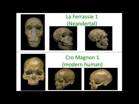 CARTA: Die Genetik des Menschsein: Die Neandertaler und Denisovan Genome