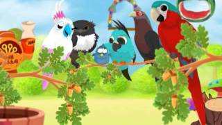 Bird Land YouTube video
