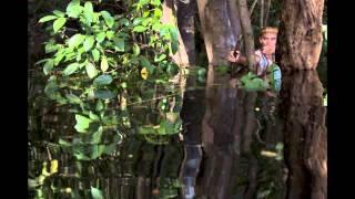 Cuộc sống chật vật của thổ dân trong rừng Amazon
