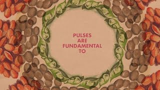 The book 'Pulses, nutritious seeds for a sustainable future' takes readers on a journey around the world, showing how edible seeds – known as pulses – fit in ...