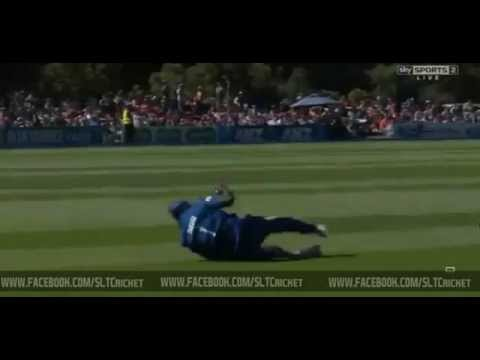 Thisara Perera takes a classic catch to dismiss Brendon McCullum