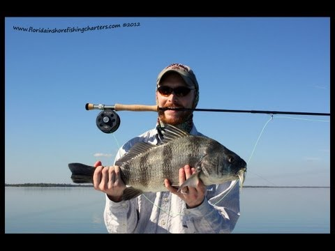 Mosquito Lagoon Fly Fishing Guide Redfish Trout Black Drum