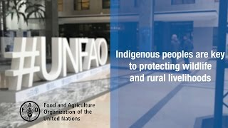 Indigenous peoples are key to protecting wildlife and rural livelihoods