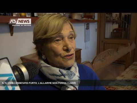 11/11/2019 | ENNESIMO FURTO, L'ALLARME NON FERMA I LADRI