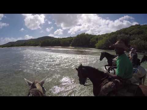 Horseback Riding on St Thomas Beach with Retired Sergeant Jesse James