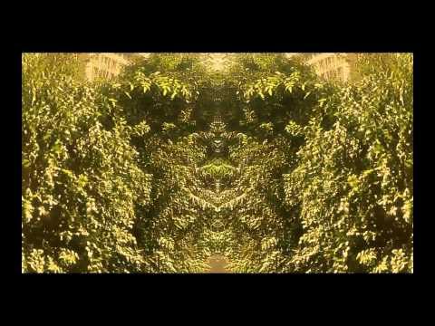 Diger Rokwell- Innersense