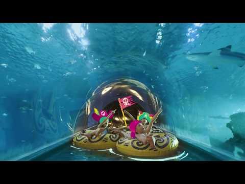Aquapark Reda - egoztyczna przygoda z nauką i zabawą