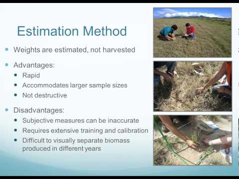 Harvest and Estimation Methods