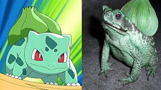 Real Life Pokemon: Here are the top 15 pokemon that actually exist in real life. You won't believe the amount of real life pokemon that are hiding within the...