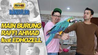 Video Ini Caranya Memberi Makan Burung Puluhan Juta!! MP3, 3GP, MP4, WEBM, AVI, FLV Februari 2019