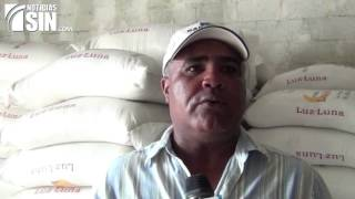 Productores del noroeste niegan estén comercializando arroz plástico