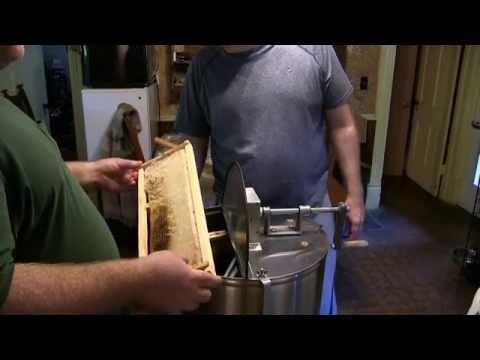 Honey Extraction 2015