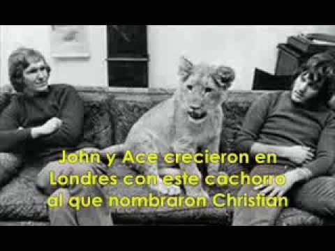 Christian el león; la historia de una bonita amistad
