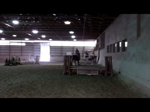 Moriah Patashnik's Winning Ride in Intermediate Fences - 2/23/14