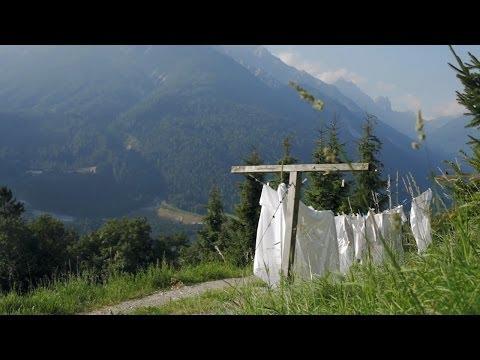 Sommer im Stubaital in Tirol, Österreich - Tirol Werbung (видео)