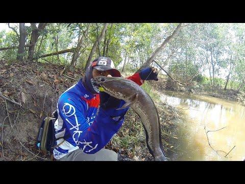 ตกปลาช่อน - ภาคปฎิบัติจริง เกี่ยวกับการตกเท็กซัส ด้วยเหยื่อประเภท หนอนยาง คัน RYOKO WalkerMan WT 8-16 ยาว 6.6 ฟุ๊ต...