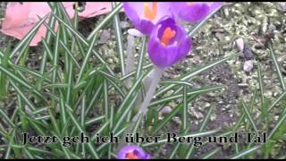 Jetzt Fängt Das Schöne Frühjahr An!