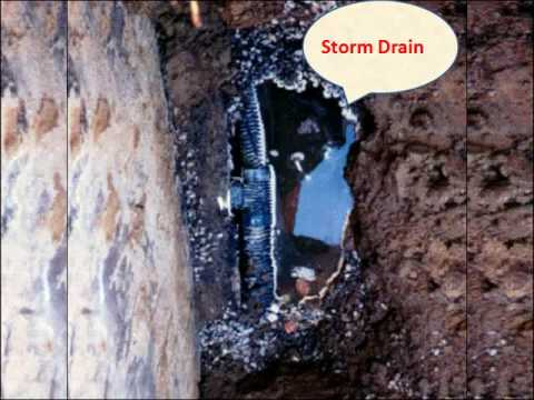 Save Your Drains From BP-Like Disaster – Portland Plumbing Plus  Can Help Unclog Clogged Drain