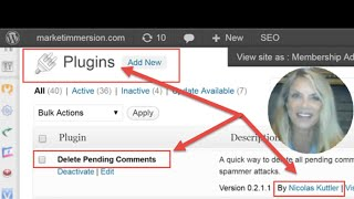 WordPress: Remove Spam and Pending Comments In Seconds