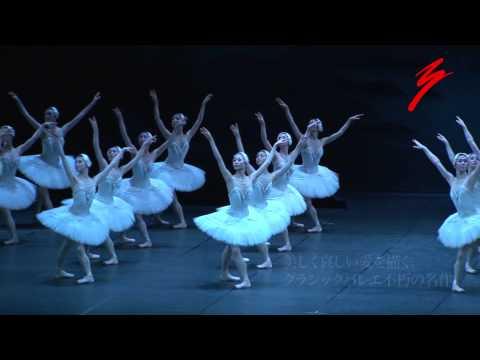 牧阿佐美バレヱ団 2013年6月公演「白鳥の湖」P.V