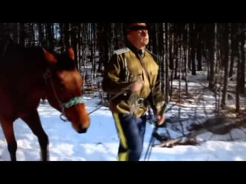Памяти героев Особого Маньчжурского отряда атамана Семёнова (видео)