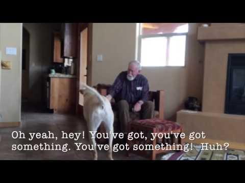 兒子送給失智症爸爸一隻狗狗陪伴左右,幾天後打開監視器畫面一看眼淚直直流!
