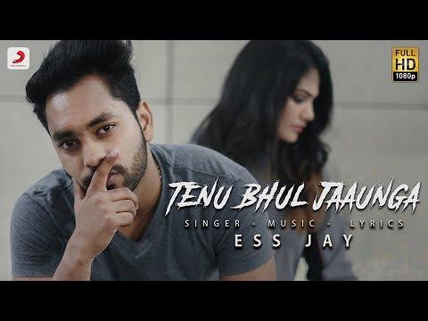 Video Ess Jay - Tenu Bhul Jaaunga | Latest Punjabi Song 2018 download in MP3, 3GP, MP4, WEBM, AVI, FLV January 2017