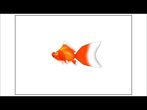 Scammer Goldfish on Hold