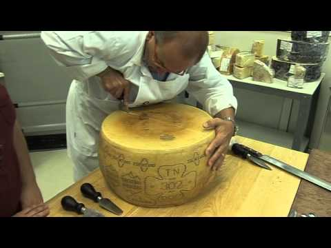 Italian cheese artisan breaks a Parmesan cheese wheel