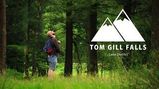 Tom Gill Falls