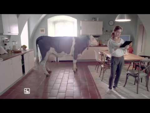 Eliška J. v kampani Milka/Eliška J. in Milka TVC