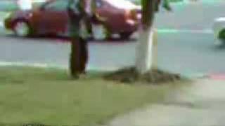 Borracho Ninja - Videos De Humor - Humor Variado - ElRellano Com