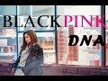 How would BLACKPINK sing DNA by BTS [Line Distribution + MV]